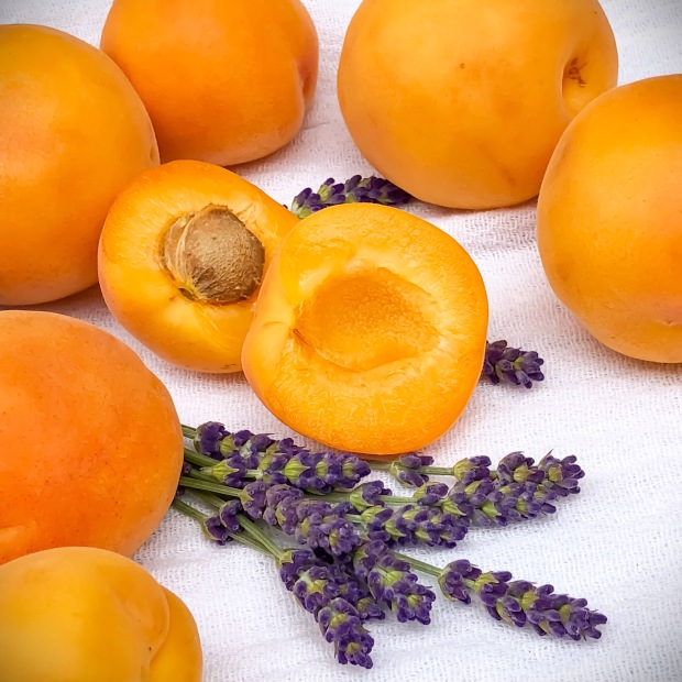 Apricot and lavender jam ingredients